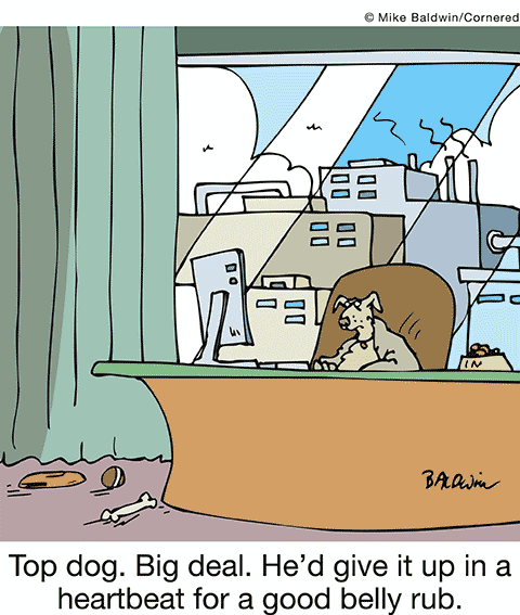Cartoon - Top dog, big deal, he'd give it up in a heartbeat for a good belly scratch.